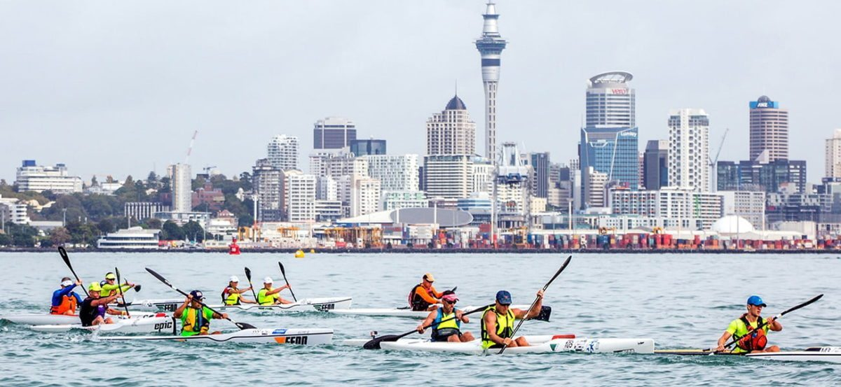Auckland web design by Phancybox for Radix Nutrition sponsors of Giltrap VW King and Queen of the Harbour