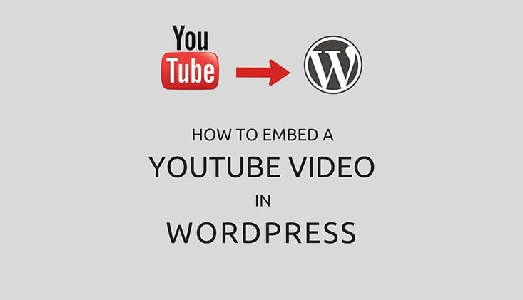Phancybox How to Embed a YouTube video in WordPress