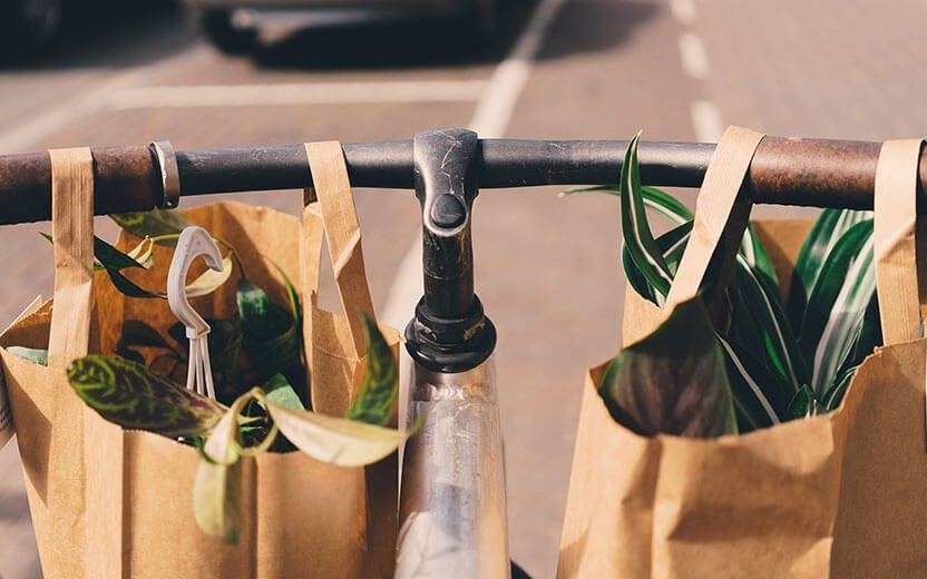 Phancybox Grow your online shop, by avoiding this major mistake